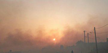راهکارهای جایگزین آتش زدن مزارع